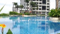 Bán căn Penthouse lầu 39 (đẳng cấp bậc nhất TP.HCM) view sông SG. khu Riviera Point Q7