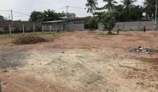 Cho thuê đất trống 3000m2, giá rẻ An Phú Đông 3, quận 12