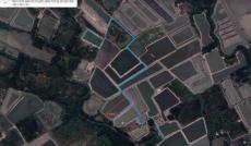 Cần bán lô đất xã Bình Khánh, Cần Giờ, TP.HCM